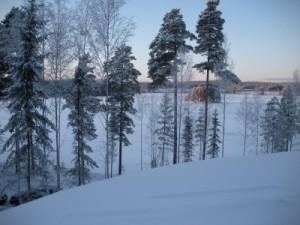 Villaatrium_snö2